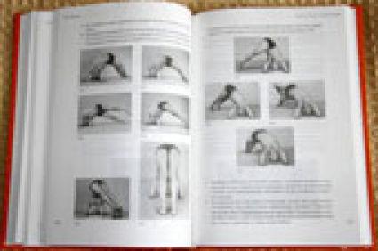 Книга по йоге «Йога Дипика»