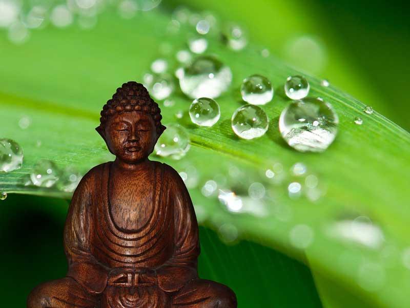 4 истины буддизма
