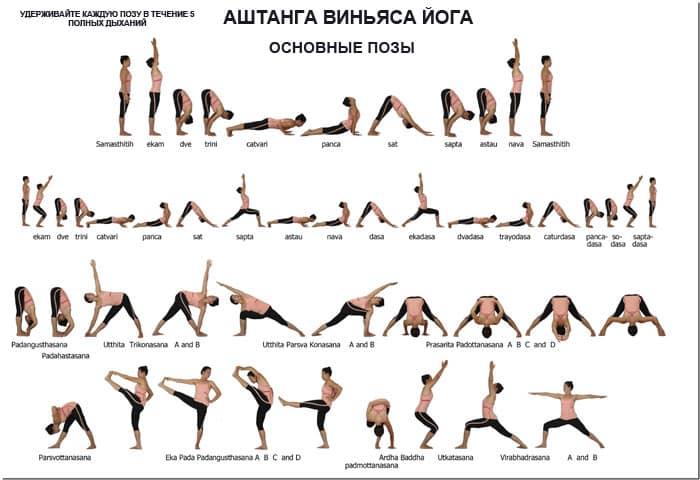 Федерация йоги женская йога