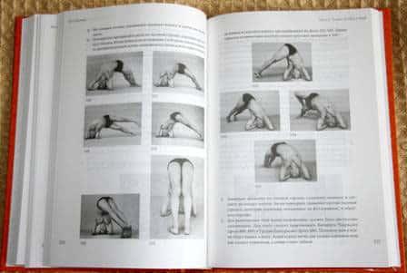 йога дипика прояснение йоги
